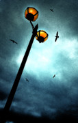 Streetlight Posters - Lamps With Birds Poster by Meirion Matthias