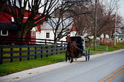 Horse And Buggy Posters - Lancaster County Horse and Buggy Poster by Heidi Reyher