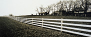 Lancaster Photos - Lancaster Fence and Horses by Jack Paolini