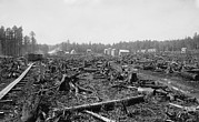 Lumber Industry Framed Prints - Land Littered With The Stumps Of Trees Framed Print by Everett