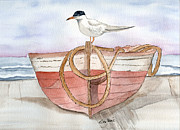Sea Gull Prints - Landed Print by Eva Ason