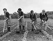 Home Front Prints - Landgirls Hoeing Print by Maeers
