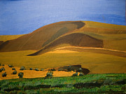 Sand Dunes Paintings - Landscape-1 by Ravi Shekhar Pandey