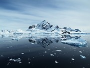 Antarctica Prints - Landscape Print by Gordon Lo