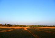 Landscape Near Mauvezin Print by Sandrine Pelissier