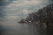Wintry Metal Prints - Landscape Of Dreams Metal Print by Joana Kruse