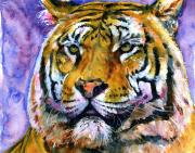 Watercolor Tiger Framed Prints - Landscape Tiger Framed Print by John D Benson