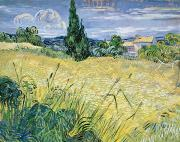 Landscape Paintings - Landscape with Green Corn by Vincent Van Gogh