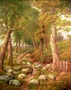 Fence Painting Prints - Landscape with Sheep Print by Charles Joseph