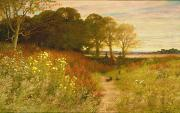Fence Painting Metal Prints - Landscape with Wild Flowers and Rabbits Metal Print by Robert Collinson