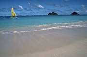 Thomas R. Fletcher Digital Art Prints - Lanikai Beach Mokulua Islands Print by Thomas R Fletcher