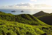 Pastureland Photo Posters - Lanikai Hills Poster by Dana Edmunds - Printscapes