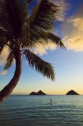 Stand Up Paddle Board Photos - Lanikai Paddler at Sunrise by Tomas del Amo