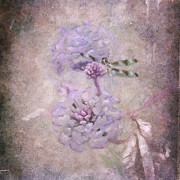 Texture Flower Posters - Lantana in Purple Poster by Betty LaRue