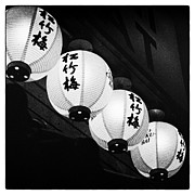 Japanese Lanterns Framed Prints - Lanterns Framed Print by Tanya Harrison