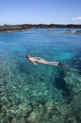 Diving Snorkeling Art Prints - Laperouse Bay, Woman snorkeling Print by Quincy Dein - Printscapes