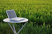 Laptop Framed Prints - Laptop on table by a wheat field at sunset Framed Print by Sami Sarkis