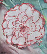 Carnation Painting Metal Prints - Large Carnation Metal Print by Alex Vishnevsky