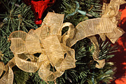 Pine Needles Photos - Large Christmas Bow by Linda Phelps