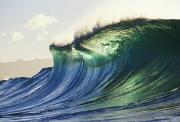 Waves - Large Green Blue Wave by Don King - Printscapes