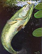 Largemouth Paintings - Largemouth Bass by Connie Tom