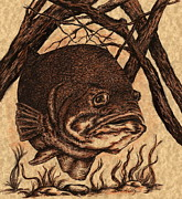 Underwater Drawings Prints - Largemouth Bass Print by Kathleen Kelly Thompson