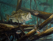 Largemouth Paintings - Largemouth Bass by Scott Thompson