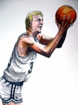 Boston Celtics Drawings Posters - Larry Bird Poster by Dave Olsen