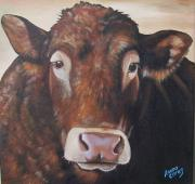 Limousin Posters - Larry Limo Poster by Laura Carey