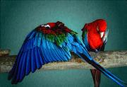 Aves Digital Art - Las aves Pequenas by Paul Wear