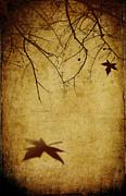 Last Breath Of Autumn Print by Svetlana Sewell