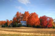 Autumn Art Prints - Last color on the farm Print by Robert Pearson
