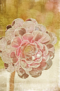 Photo Mixed Media Metal Prints - Last Day of Summer Metal Print by Bonnie Bruno