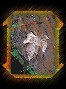 Leaf Digital Art Prints - Last Leaf Standing Print by Tim Allen