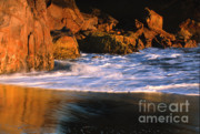 Pnw Art - Last Light on Harris Beach by Sandra Bronstein