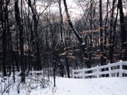 Scott Hovind - Last Remains of Autumn