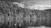David Dehner Prints - Late Afternoon at the Lake - BW Print by David Dehner