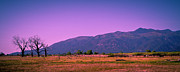 Late Afternoon In Taos Print by David Patterson