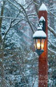Lightpost Framed Prints - Late Afternoon Snow Framed Print by Sandra Bronstein