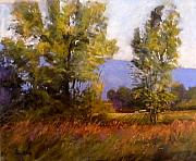 Tom Christopher - Late Afternoon Sun