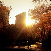 Vivienne Gucwa - Late Autumn In New York...