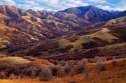 Oak Creek Photos - Late autumn in the Wasatch foothills by Utah Images