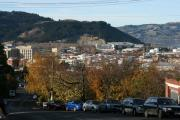 Terry Perham Photos - Late Autumn View To North Dunedin by Terry Perham