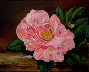 Camellia Paintings - Late Bloomer by Barbara Pirkle