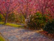 Terry Perham Originals - Late Spring Blossom by Terry Perham