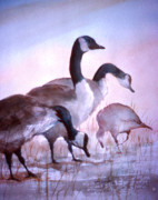 Geese Paintings - Late Supper by Ken Marsden