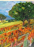 Carolyn Zaroff - Late Vineyard