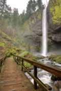 Oregon Scenery - Latourell Falls Waterfall and Bridge Columbia River Gorge Oregon by Dustin K Ryan