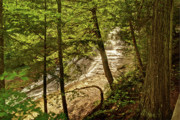 Michigan Waterfalls Prints - Laughing Whitefish Falls 2 Print by Michael Peychich