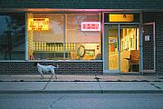 Steve Augustin Metal Prints - Laundromat Open Metal Print by Steve Augustin